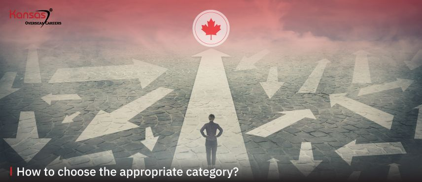 How-to-choose-the-appropriate-category-