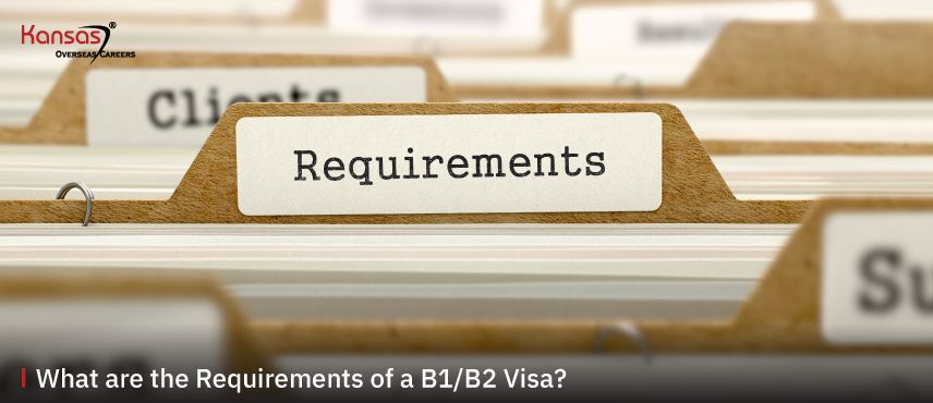 What-are-the-Requirements-of-a-B1-B2-Visa--